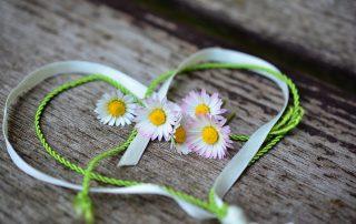 Herz mit Gänseblümchen